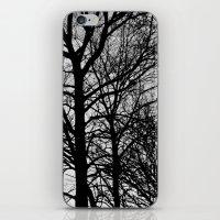 arya stark iPhone & iPod Skins featuring Stark by MLauxDesign