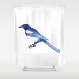 Magpie (Pica pica) - blue and turquoise Shower Curtain