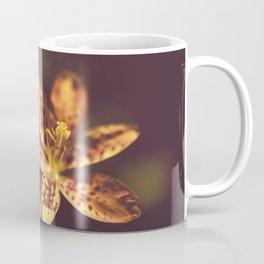 Dramatic Orange Leopard Lily Flower Botanical / Floral / Nature Photo Coffee Mug