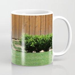Daisy and Maui Coffee Mug