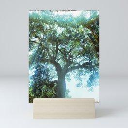 Ramona Oak Tree Mini Art Print