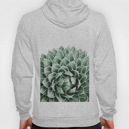 Succulent splendour Hoody