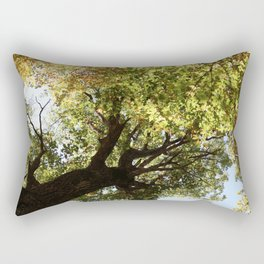 Fall Canopy - Woodland Trees Rectangular Pillow
