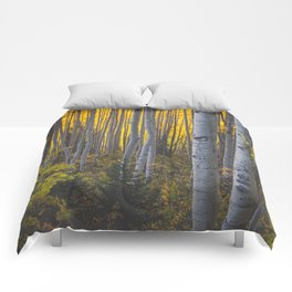 Duos of Aspens in a Yellow Colorado Autumn Forest Comforters