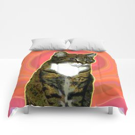 Pablo Cat Comforters