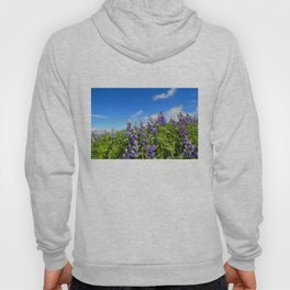 Summer Lupine in Iceland Hoody