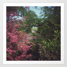 Garden Gazebo Art Print