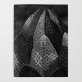 Lotus Temple by Lu, Black and White Poster