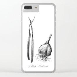 Garlic Botanical Ilustration Clear iPhone Case