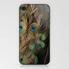Peacock #1 iPhone & iPod Skin