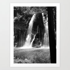 Places in Black & White: Burney Falls 22 Art Print