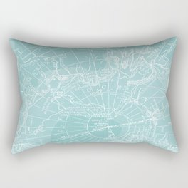 Polar Chill Rectangular Pillow
