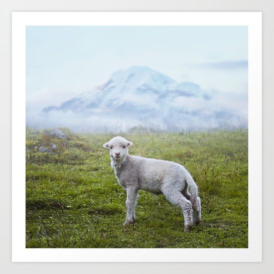 Little Lamb Art Print