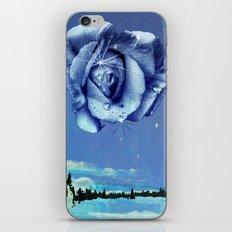 winter rose iPhone & iPod Skin