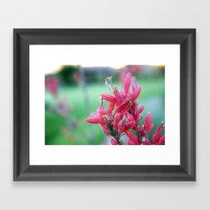 Hidden Gems Framed Art Print