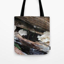 Where The Fairies Live Tote Bag