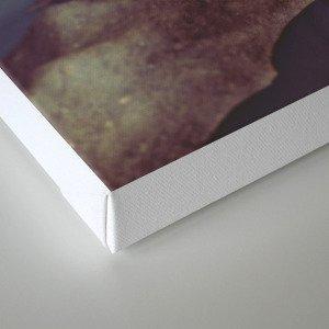 LAST OF US - ∀ Canvas Print