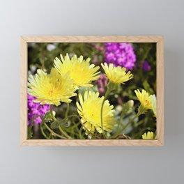 Desert Wildflowers by Reay of Light Photography Framed Mini Art Print