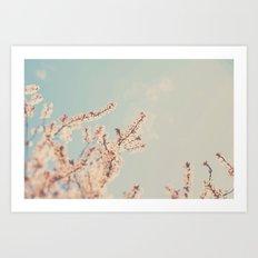 spring is in bloom ...  Art Print