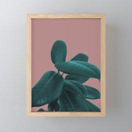 Ficus Elastica #9 #AshRose #decor #art #society6 Framed Mini Art Print