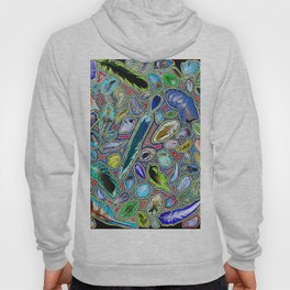 Feathers of birds of the world Hoody