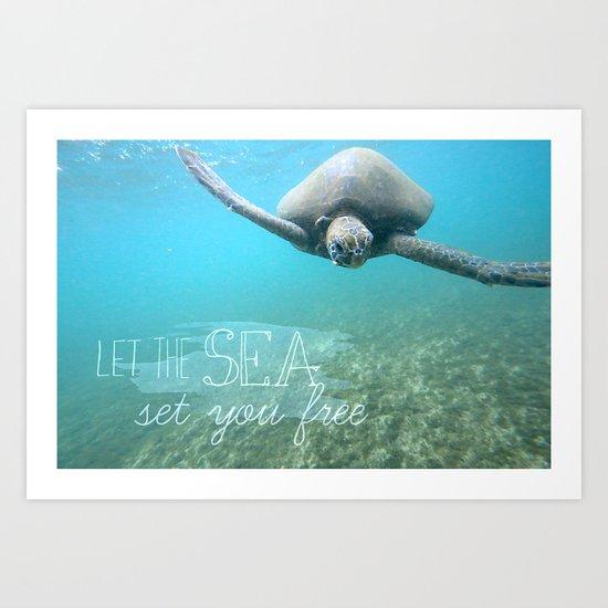Free Turtle  Art Print