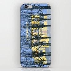 The Cumberland House iPhone & iPod Skin