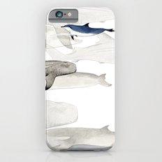 Life Aquatic iPhone 6s Slim Case
