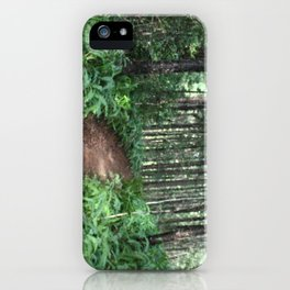 forest path. iPhone Case