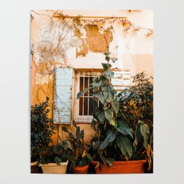 Peeling paint and plants Poster