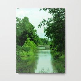 green garden dream Metal Print