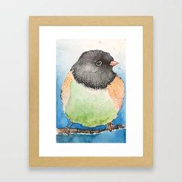 Dark-eyed junco watercolor Framed Art Print