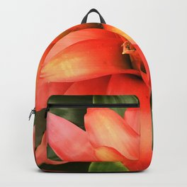 Heirloom Tomato Red Bromeliad Flower Close-Up Backpack