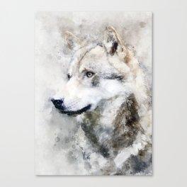 Watercolour grey wolf portrait Canvas Print