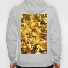 Autumnal Colours Hoody
