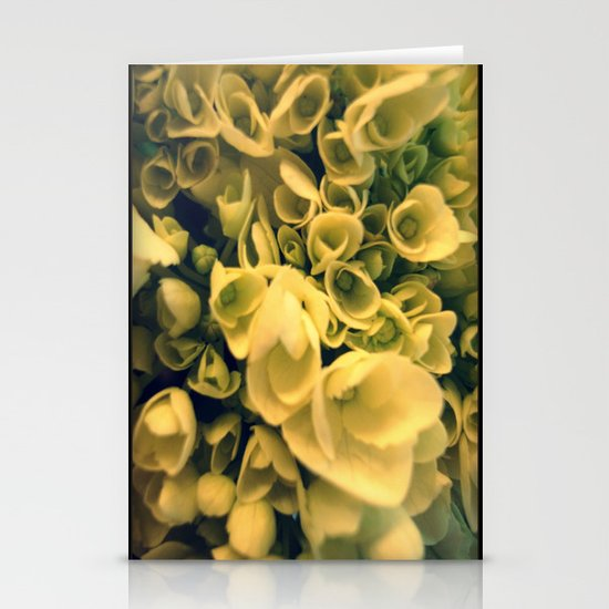 FLOWERS 003 Stationery Cards