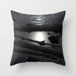 Scout Lake Under Snow and Sun Throw Pillow