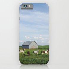 Farm Horses iPhone 6s Slim Case
