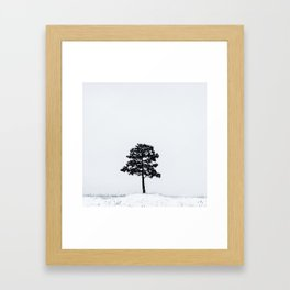Solo Tree In The Snow Framed Art Print
