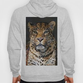 Portrait of Leopard Hoody