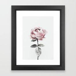 flower 3 Framed Art Print