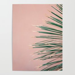 Green on Coral   Botanical modern photography print   Tropical vibe art Poster