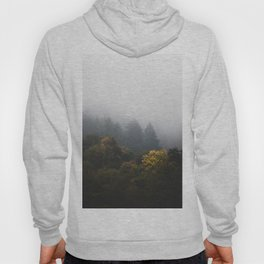 Autumn forest wrapped in fog Hoody