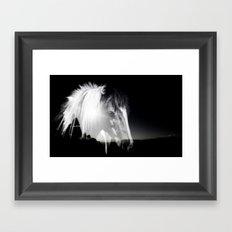 Horse Black And White Landscape Framed Art Print