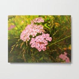 Breckenridge Flowers Metal Print