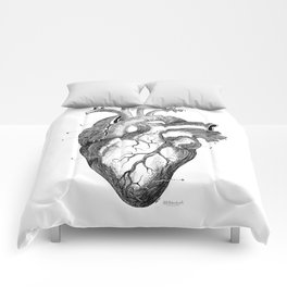 Anatomic hearth engraving Comforters