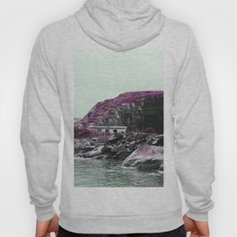 Pink Norway - The House Hoody