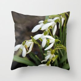 First signs of spring (snowdrops) Throw Pillow