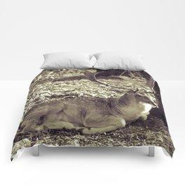 Fallow deer #society6 Comforters