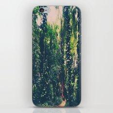Rainforest, Maui  iPhone & iPod Skin